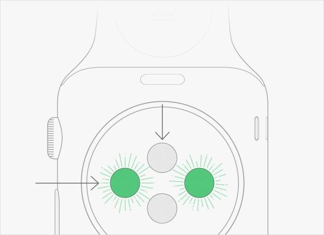 apple-watch-pulse-640x464